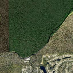 Sweetwater Creek: Ecology - Seminole WaterAtlas org